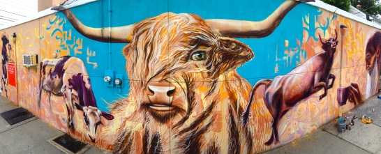 Staten Island, NY 2015: Mural on Fab Cup Coffee Shop inspired by cattle, a highly symbolic animal in many cultures throughout history.